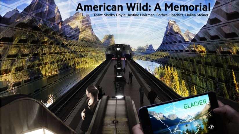 American Wild example