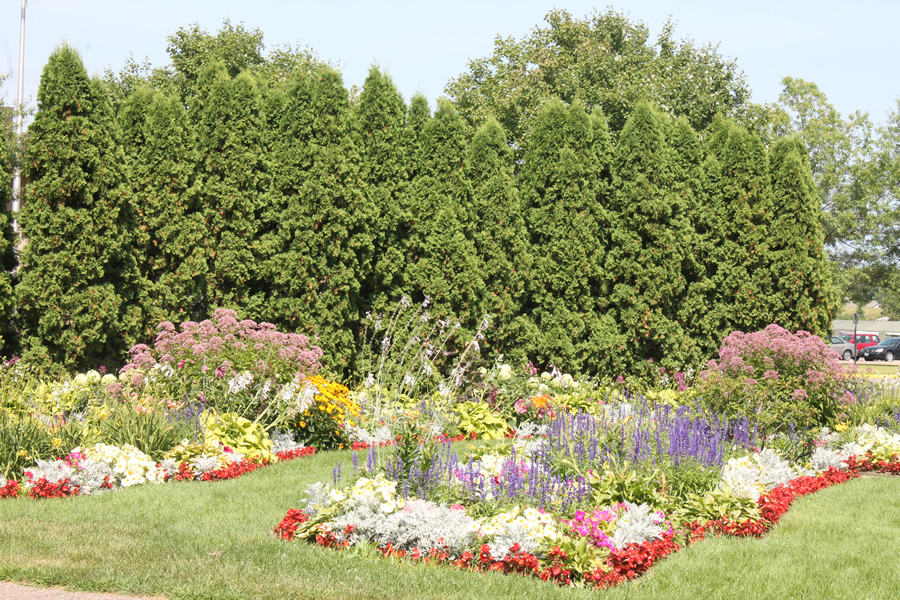 People who adopt a park for the summer can plant flowers as long as they agree to water and weed them.