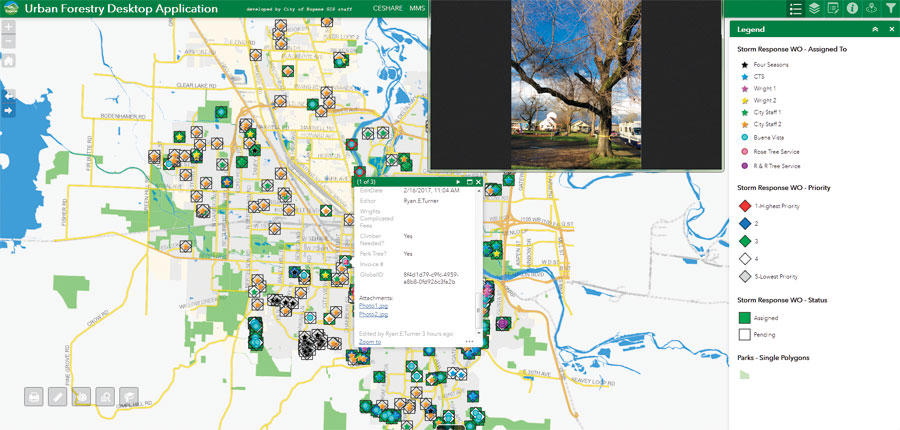 Eric Cariaga, the city's parks and open space technical specialist, built a web-based app that could map and track the tree hazards residents called in to the public works department.