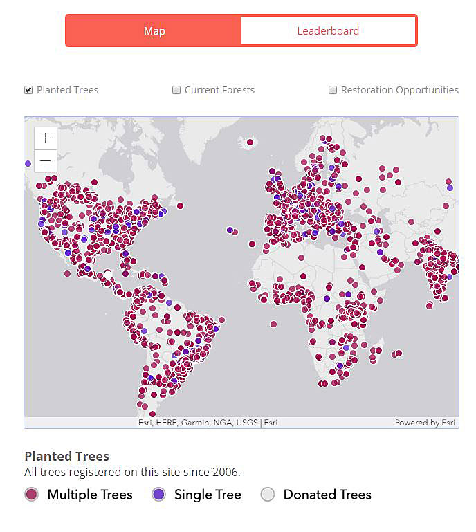 The app also maps where trees have been planted.