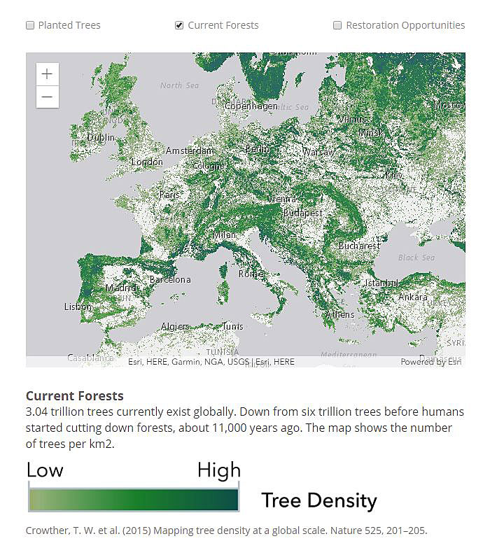 The map in the app displays the location of forested areas throughout the world.