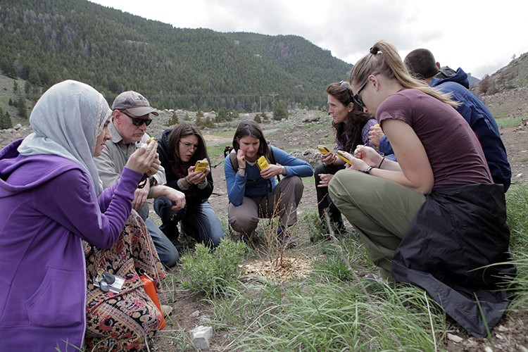 Students work in concert with Sinks Canyon State Park to create a geodatabase in Esri's ArcPad and then use Trimble Juno devices to mark the position and health of shrubs planted after a summer wildfire.