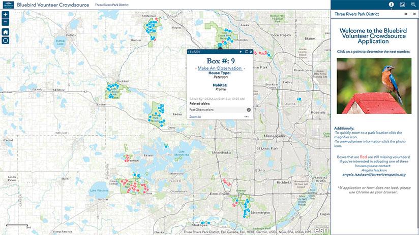 Bluebird nest web app