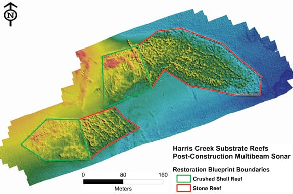 A digital surface model shows new reefs