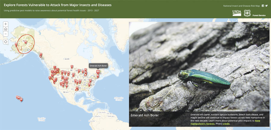 This Esri Story Map app lets users click on various locations to see insects that affect forests in those areas and learn about diseases that are contributing to forest decline. (Photo courtesy of the Pennsylvania Department of Conservation and Natural Resources—Forestry.)