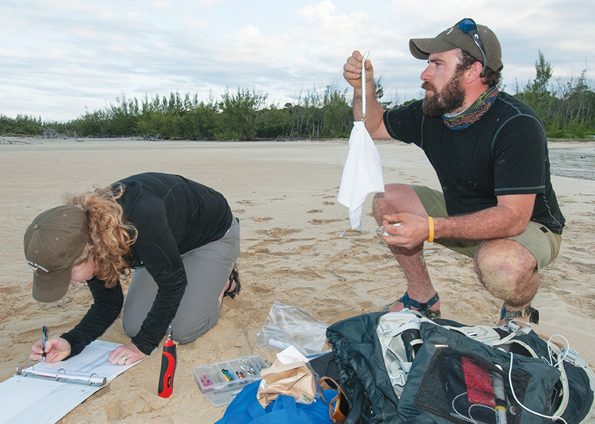 Audubon volunteers collect data for a project in the Bahamas. (Photo by Walker Golder/courtesy of the National Audubon Society.)