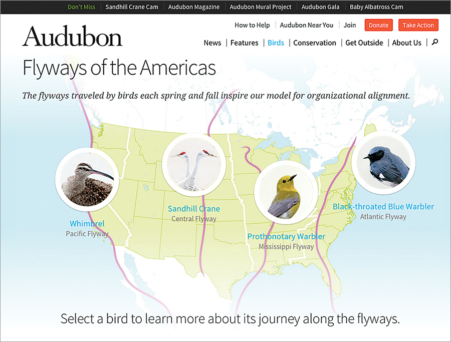 When Audubon committed to large-scale conservation projects in 2010, it adopted a new organizational structure based on four flyways traveled by migrating birds. (Screen shot courtesy of the National Audubon Society.)
