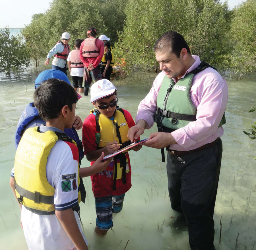 Students collected data about the mangrove trees and the land surrounding them.