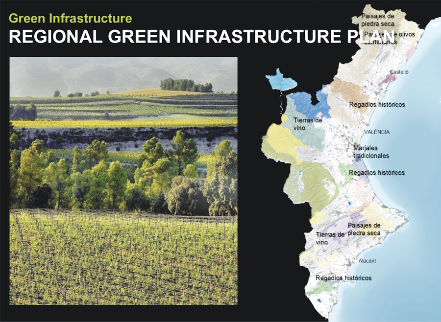 Today, a plan is in place to create a green infrastructure network in the Valencia region to promote clean air and biodiversity.