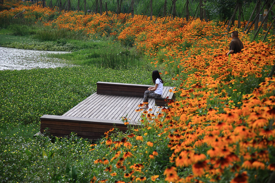 A girl sits on a bench in Minhu Wetland Park in Liupanshui City, China. The Chinese firm Turenscape created a biodiverse ecosystem for a once-polluted area. Photo courtesy of Kongjian Yu/Turenscape.