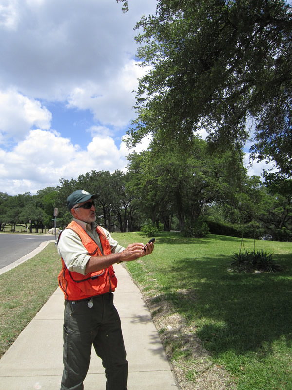 Urban regional forester Oscar Mestas uses a Texas A&M Forest Service app to capture city tree data in Austin, Texas. The information can be e-mailed to the office computer, and the tree can be added to the city's maintenance schedule.