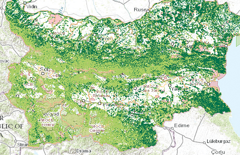 A geospatial analysis of the distribution of the stag beetle, a protected species, made by using the GIS module.