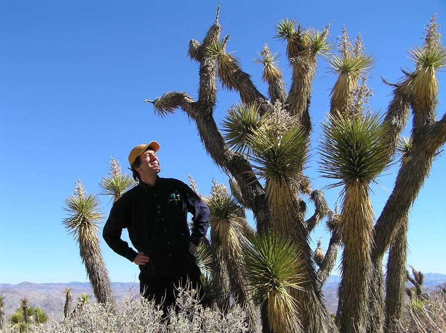 Green Guru Joseph Kerski, who blogs for Green 360, stands in the desert among several Joshua trees.