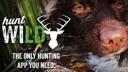 Hunt Wild Wisconsin application banner
