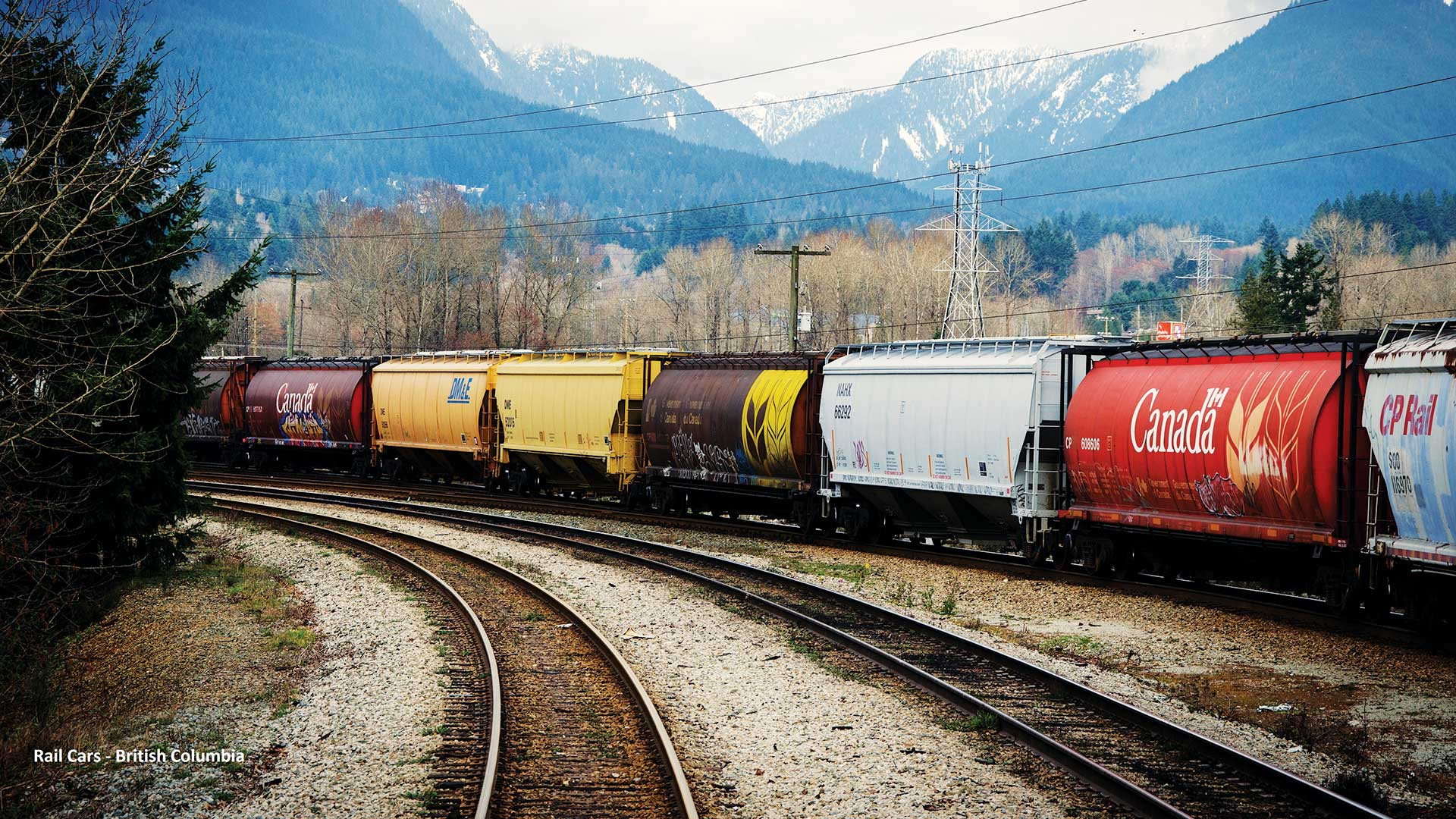 Modeling the Flow of Dangerous Goods by Rail