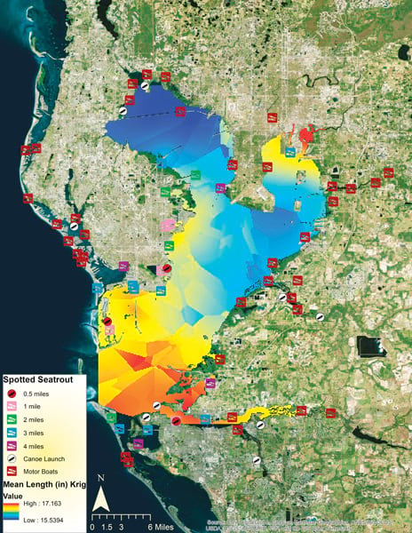 A raster surface showing where fish species are in Tampa Bay, FL