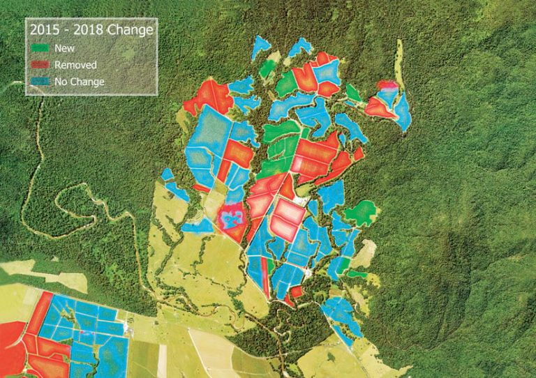 A map of a banana plantation overlaid on imagery, showing with red, green, and blue how land has changed