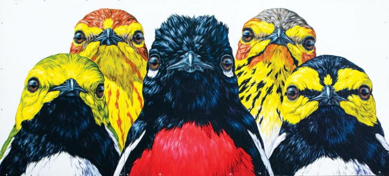 A mural showing five birds with yellow, black, white, and red coloring