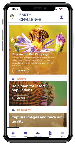 An iPhone 10 screenshot of the Earth Challenge app bee and insect exploration and monitoring section