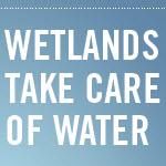 World Wetlands Day: Feb. 2, 2013