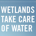World Wetlands Day: Feb. 2, 2013