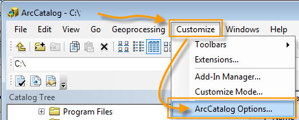 ArcCatalog Options