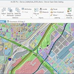 ArcGIS Pro project