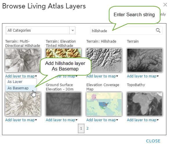 Configuring custom basemaps using Living Atlas layers