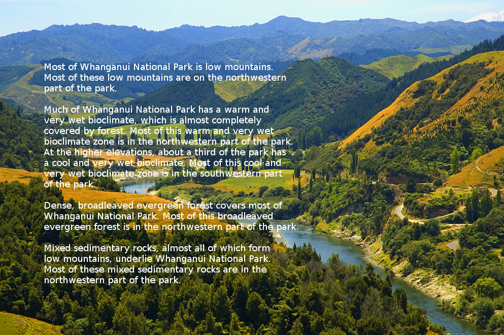 Landscape description of Whanganui National Park, New Zealand.