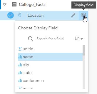 Display field