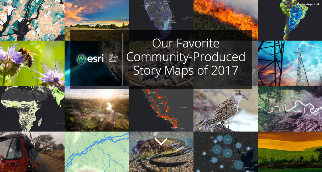 Community-produced story collage