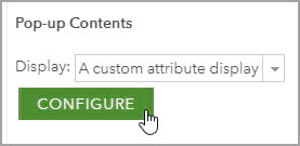 Configure custom attribute display