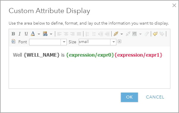 Custom attribute display using expressions