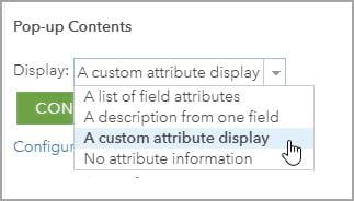 Custom attribute display