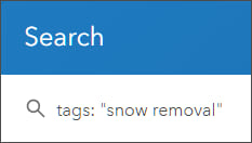 Search using tags