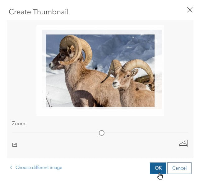 Add a custom image thumbnail