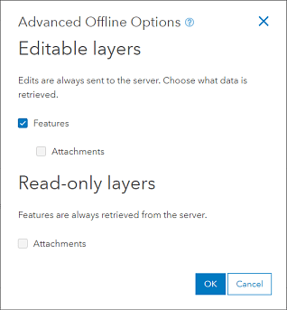 Advanced Offline Options set for no attachments