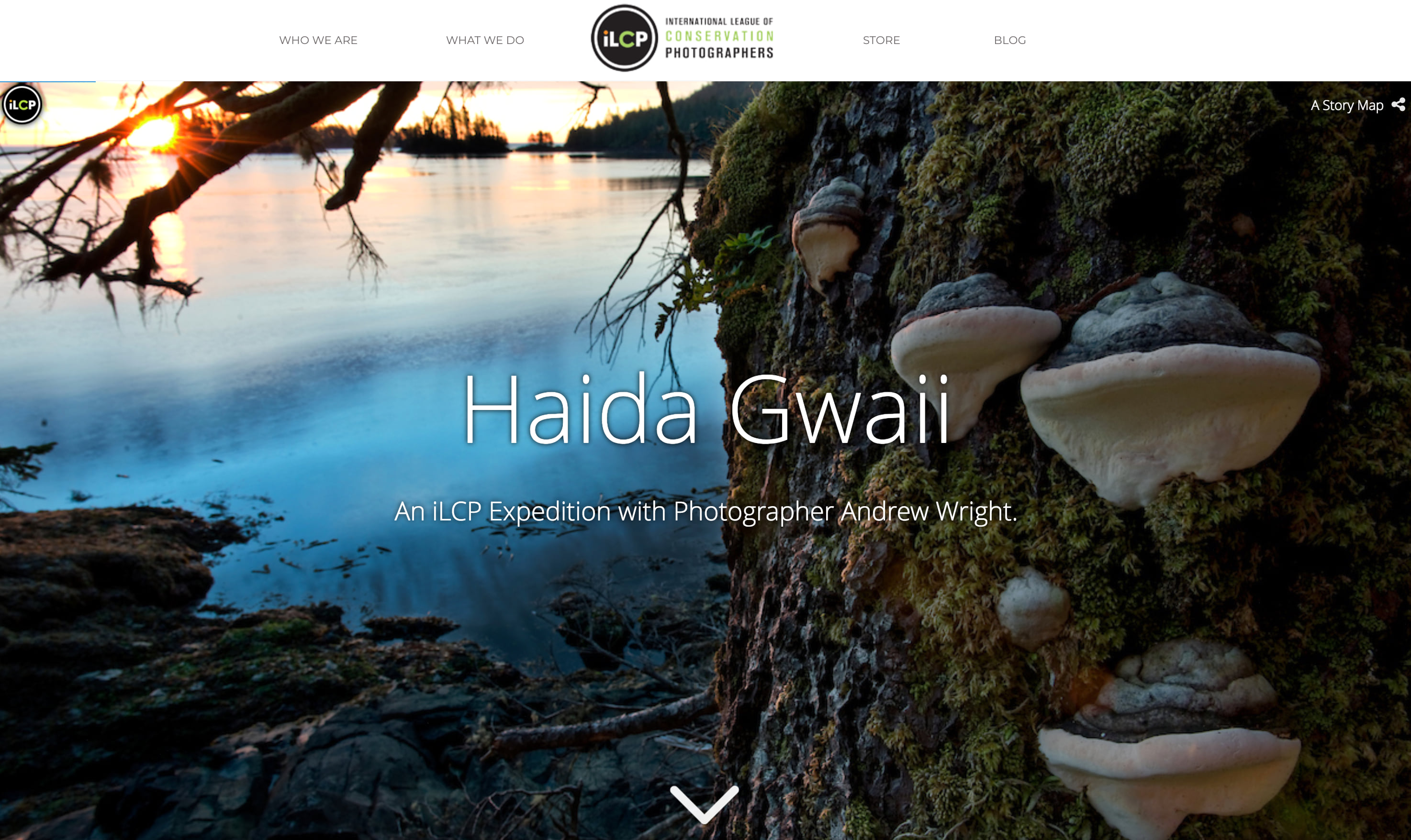 Screenshot of Haida Gwaii: An iLCP Expedition with Photographer Andrew Wright.