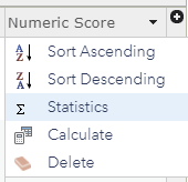 Statistics option that appears when clicking on field header in the Map Viewer.