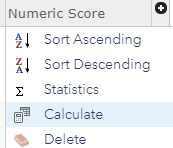 Location of the Calculate option when clicking on the field heading.