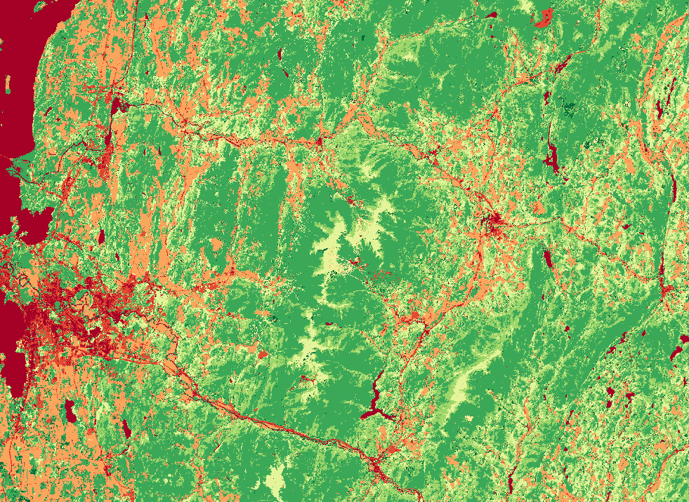 Reclassified land cover layer