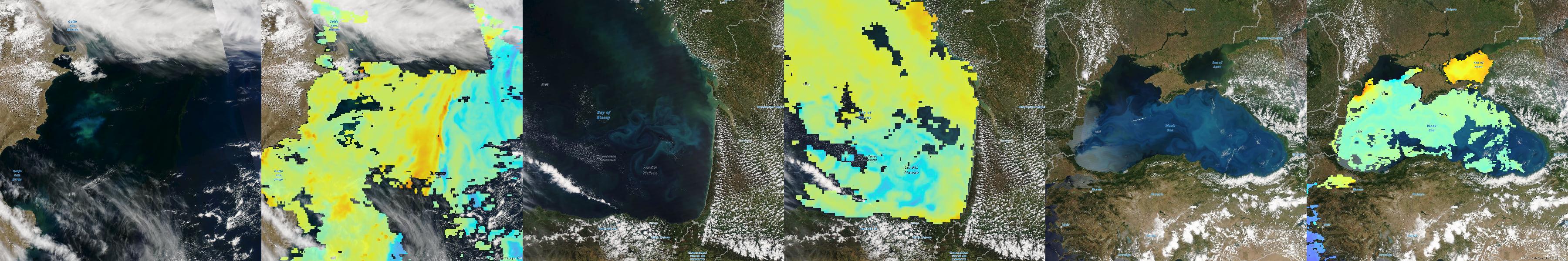 Chlorophyll, MODIS, Plankton, Living Atlas