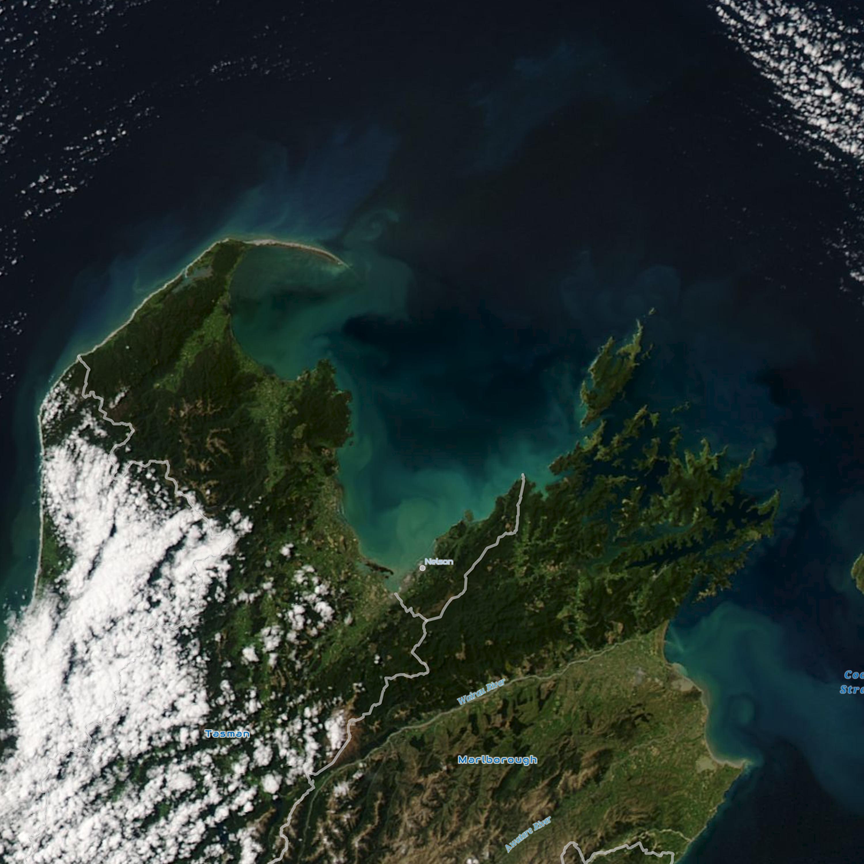 http://Tasman%20Bay,%20Phytoplankton,%20Chlorophyll