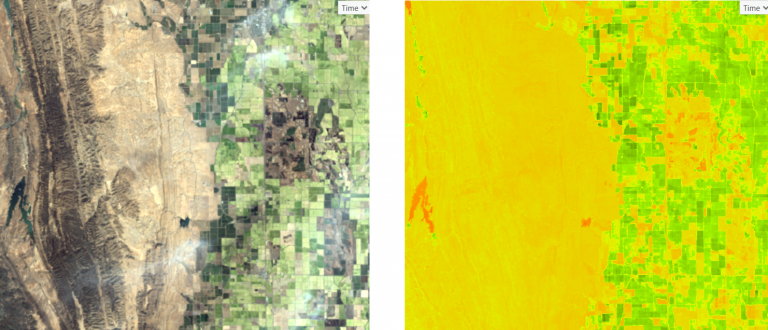 True color on left and Normalized Vegetation Index on the right