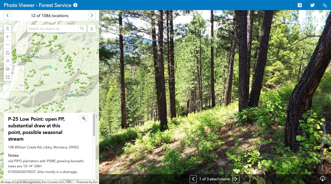 ArcGIS Online Attachment Viewer