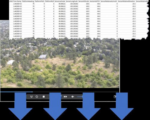 Input video stream and metadata