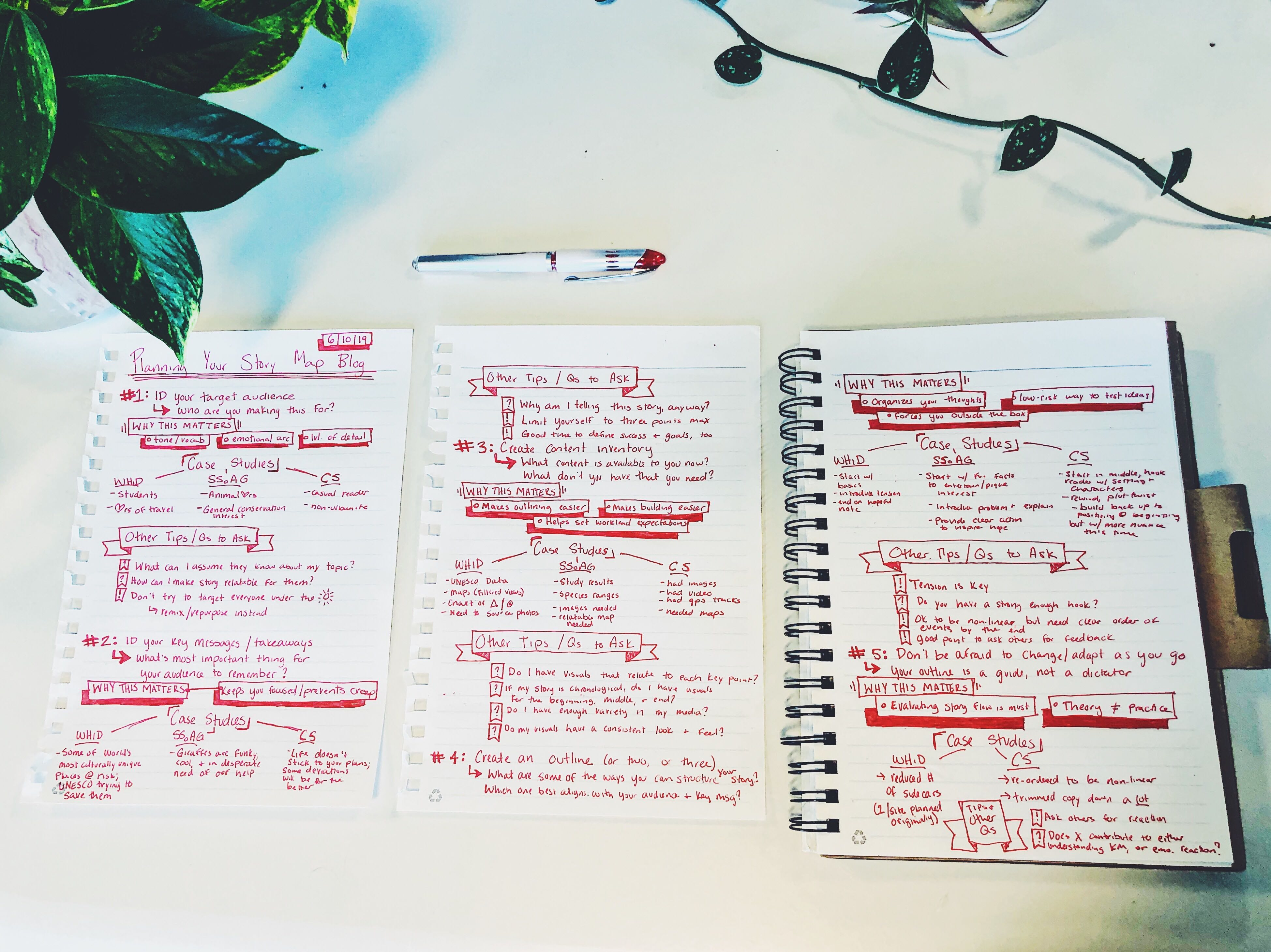 My outline for this blog: Three pieces of notebook paper with headings for each blog section and the repeated subsection within each, plus bullet point of what I wanted to say for each part