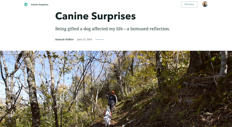 The cover of Canine Surprises, showing a minimal cover and fullscreen video with a dog and two hikers