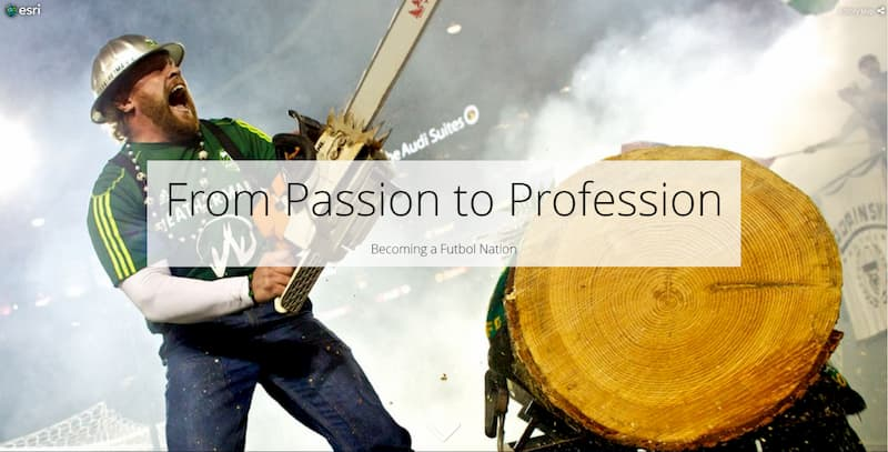 Cover of the from passion to profession story map