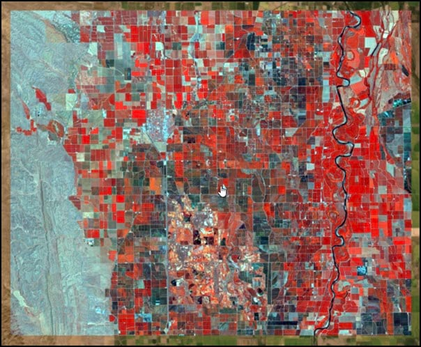 Landsat 8 image displayed as color infrared.